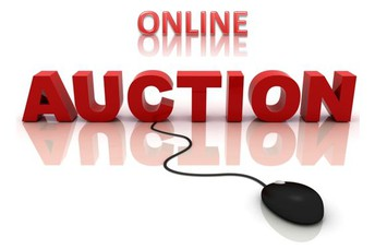 NCCS Online Auction June 27-July 4