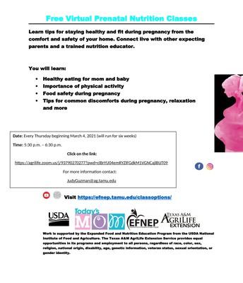 Free   Virtual Prenatal Nutrition Classes
