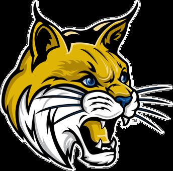 The Bobcat Roar!