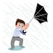 Rainstorm and Typhoon Procedures