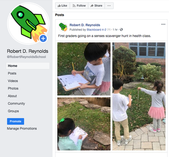 A Glimpse into Reynolds School