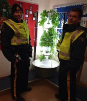 Tower Garden at Ecole Dickinsfield