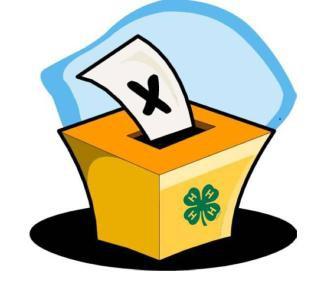 4-H Council Voting