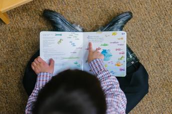 Emergent Literacy Series