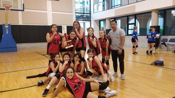 Volleyball Team Takes Third