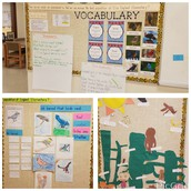 1st Grade PBL: Bird Warriors!