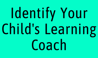 The Role of the Learning Coach