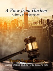 A View from Harlem by Tracey Fagan Danzey