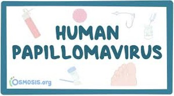 HPV VACCINE - WHAT ARE THE BENEFITS?