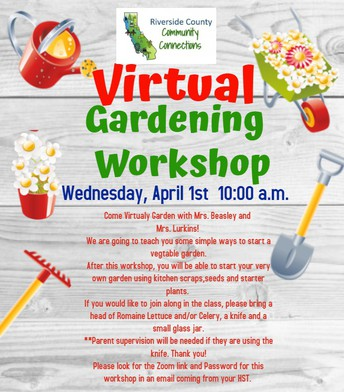 VIRTUAL Community Connections Virtual Gardening Workshop!