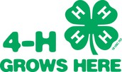 4-H Council Meeting