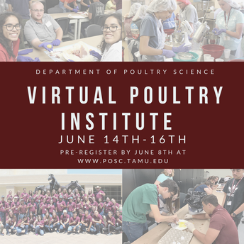 Virtual Poultry Institute