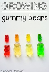 Growing Gummy Bear