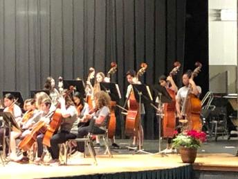 Grade 7 & 8 Orchestra Impresses the Judges