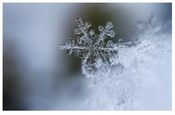 ~ New COVID protocols for Winter ~