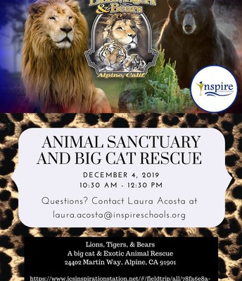 Animal Sanctuary and Big Cat Rescue