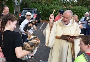 The Animals Seemed Very Happy to Be Blessed by Fr. Mooney.