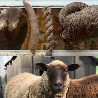 Sheep to Sweater: A Hobby Farmers Life