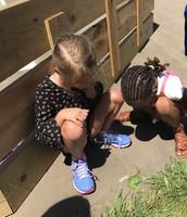 Students investigating a grasshopper at recess!  Exploring and observing nature!