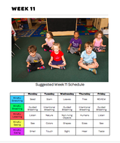 Mindful Classrooms--Week 11