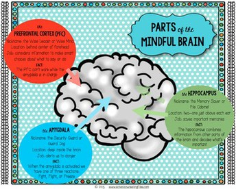 Mindful Brain Free Download