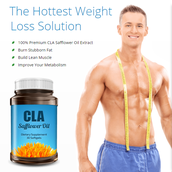 What is CLA Safflower Oil?