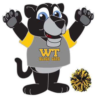 2018-19 West Terrace Cheer Team
