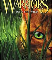 Warriors by Hunter