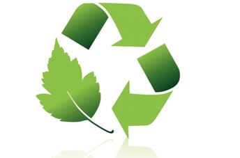 Sustainability at St Thomas'
