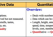 Qualitative/Quantitative Data