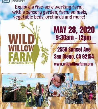 Wild Willow Farm