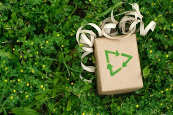 When decorating or looking for gifts for the holidays this year, don't forget to think GREEN!