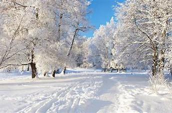 Reminder--Tamanend Winter Dance--Friday, December 14