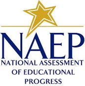 8th Grade Only: NAEP Testing