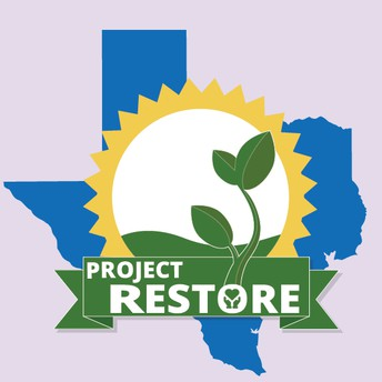 Trauma Informed Training - Project Restore