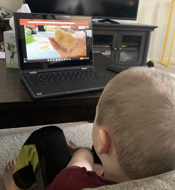 Photo of student observing baby chicks on his computer.