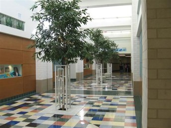 Virtual Hallways for 4-6 students