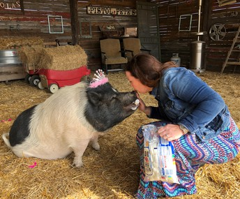 Mrs. Creamer keeps her promise and kisses a pig.