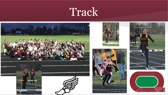 DCMS Track