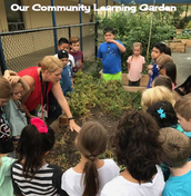 Community Learning Garden