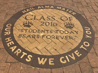 Alumni Walk DEADLINE 5-11-18
