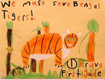 Dhruva Mondhadi - 1st grade