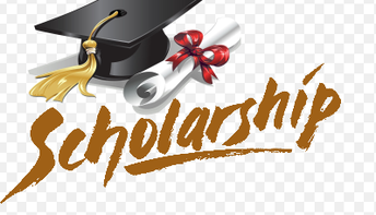 District 13 Parent Teacher Organization Scholarship Application