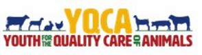 YQCA Training