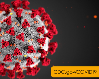 This is an image of and link to the Coronavirus (COVID-19) information from the US Centers for Disease Control and Prevention.