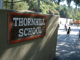 About the Thornhill Newsletter