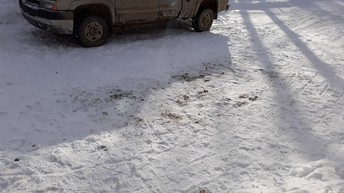 Shawn shoveled the driveway for his family.