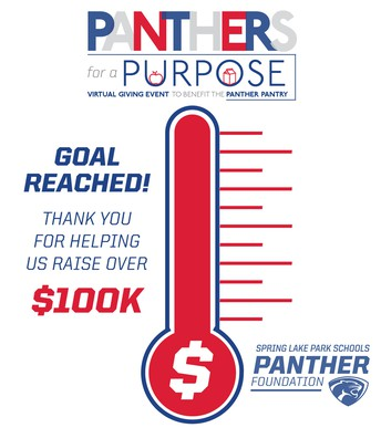 Panthers for a Purpose raises more than $100k