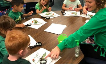 Science in Mrs. Fick's TK Class...Studying Snails!
