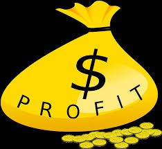 What are the profits going towards?